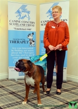 Patricia McMahon with Bruce, Therapet of the Year