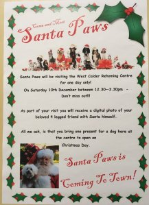 Santa Paws at Dogs Trust West Calder
