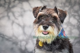 watermarked-Maggie-0024