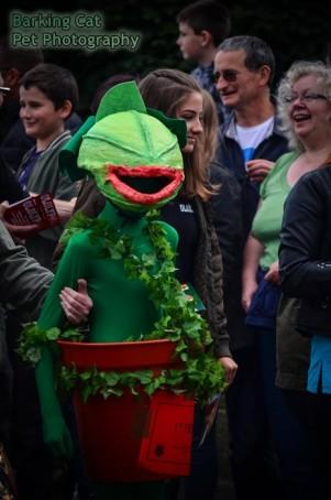 watermarked-Musselburgh Parade 2017-0182
