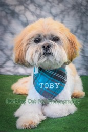 watermarked-Toby-0257