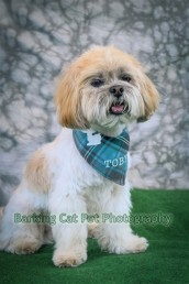 watermarked-Toby-0267