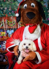watermarked-Santa Paws-0588
