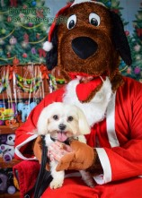 watermarked-Santa Paws-0589