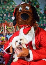 watermarked-Santa Paws-0590