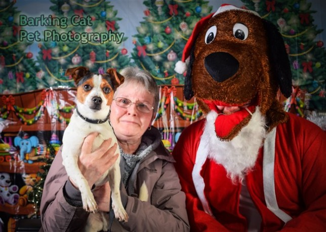 watermarked-Santa Paws-0594