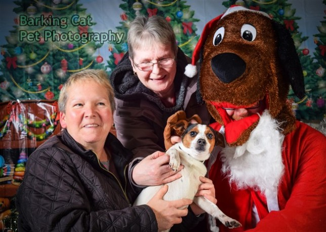 watermarked-Santa Paws-0597