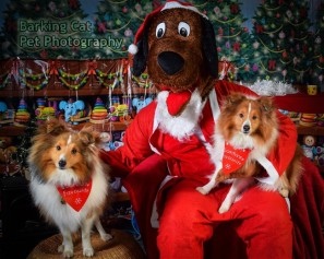 watermarked-Santa Paws-0606