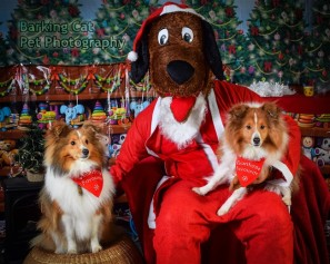 watermarked-Santa Paws-0609