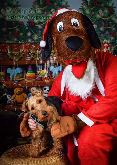 watermarked-Santa Paws-0611