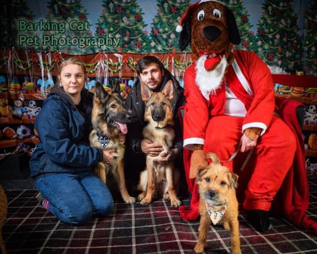 watermarked-Santa Paws-0616