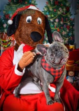 watermarked-Santa Paws-0641