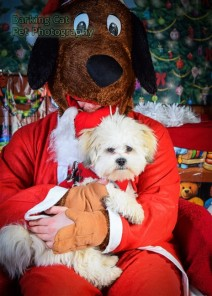 watermarked-Santa Paws-0653