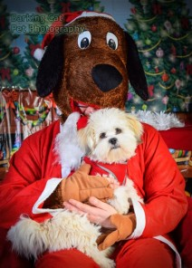 watermarked-Santa Paws-0654