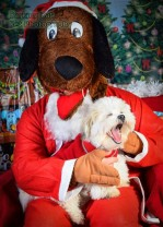 watermarked-Santa Paws-0656