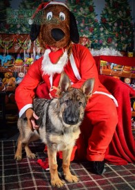 watermarked-Santa Paws-0659