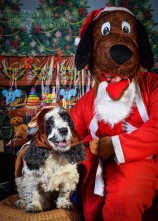 watermarked-Santa Paws-0666