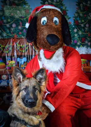 watermarked-Santa Paws-0697