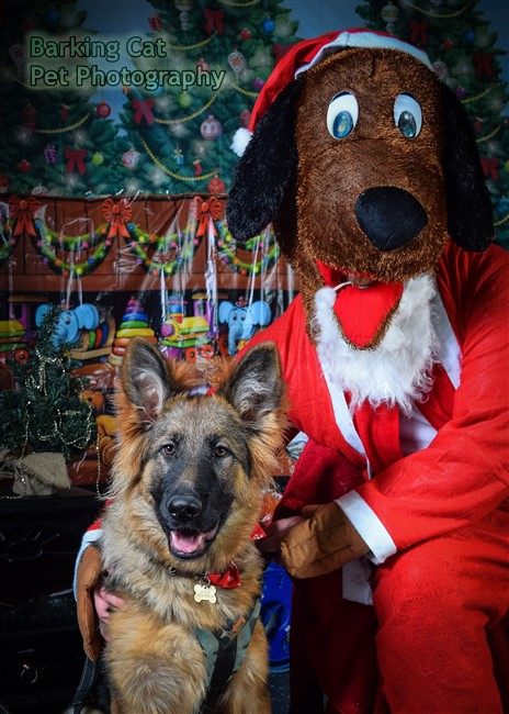 watermarked-Santa Paws-0700