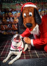 watermarked-Santa Paws-0717