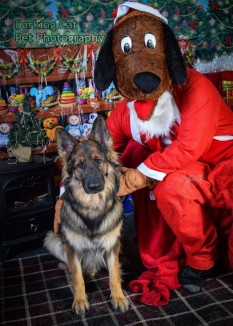 watermarked-Santa Paws-0747