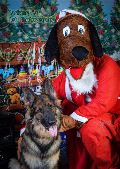 watermarked-Santa Paws-0748