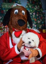 watermarked-Santa Paws-0755