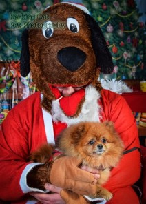 watermarked-Santa Paws-0761
