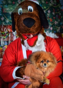 watermarked-Santa Paws-0762