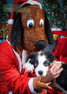 watermarked-Santa Paws-0767