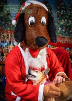 watermarked-Santa Paws-0783