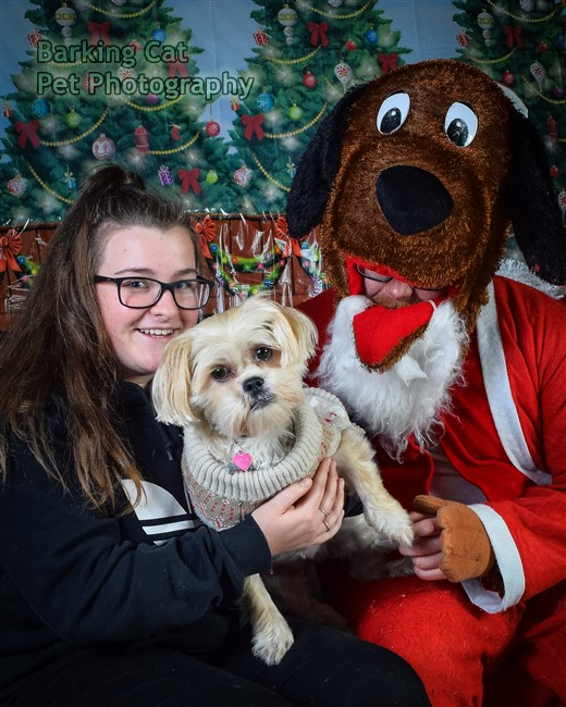 watermarked-Santa Paws-0791