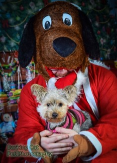 watermarked-Santa Paws-0792
