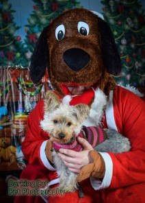 watermarked-Santa Paws-0794