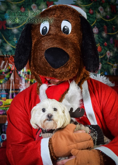 watermarked-Santa Paws-0796