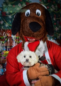 watermarked-Santa Paws-0797