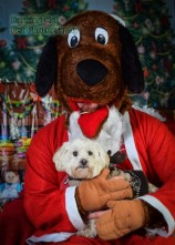watermarked-Santa Paws-0799
