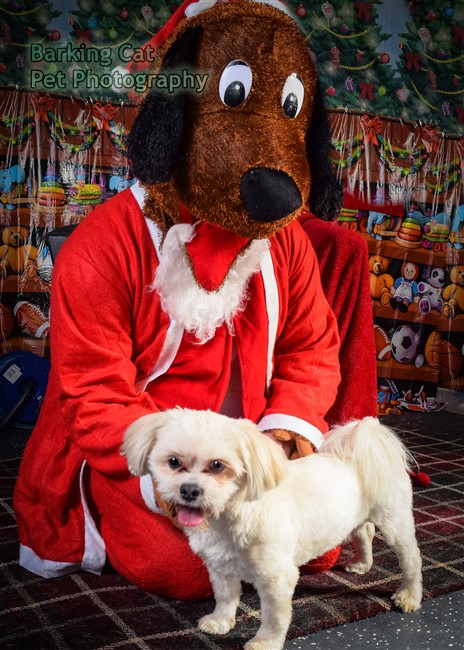 watermarked-Santa Paws-0805