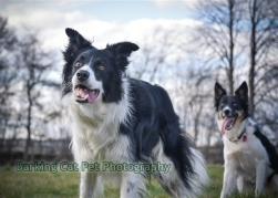 watermarked-Heidi, Swift and Rayna-0351