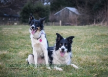 watermarked-Heidi, Swift and Rayna-0676