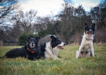 watermarked-Heidi, Swift and Rayna-0683