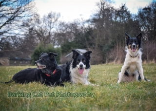 watermarked-Heidi, Swift and Rayna-0698