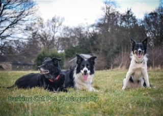 watermarked-Heidi, Swift and Rayna-0699