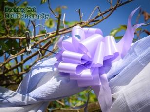 watermarked- Wedding-0082
