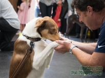 watermarked-Milo Collie Benefit-0077