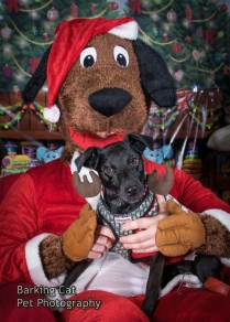 watermarked-Santa Paws-0116