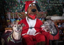 watermarked-Santa Paws-0123
