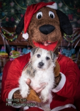 watermarked-Santa Paws-0221