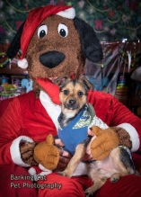 watermarked-Santa Paws-0254