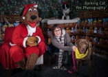 watermarked-Santa Paws-0290